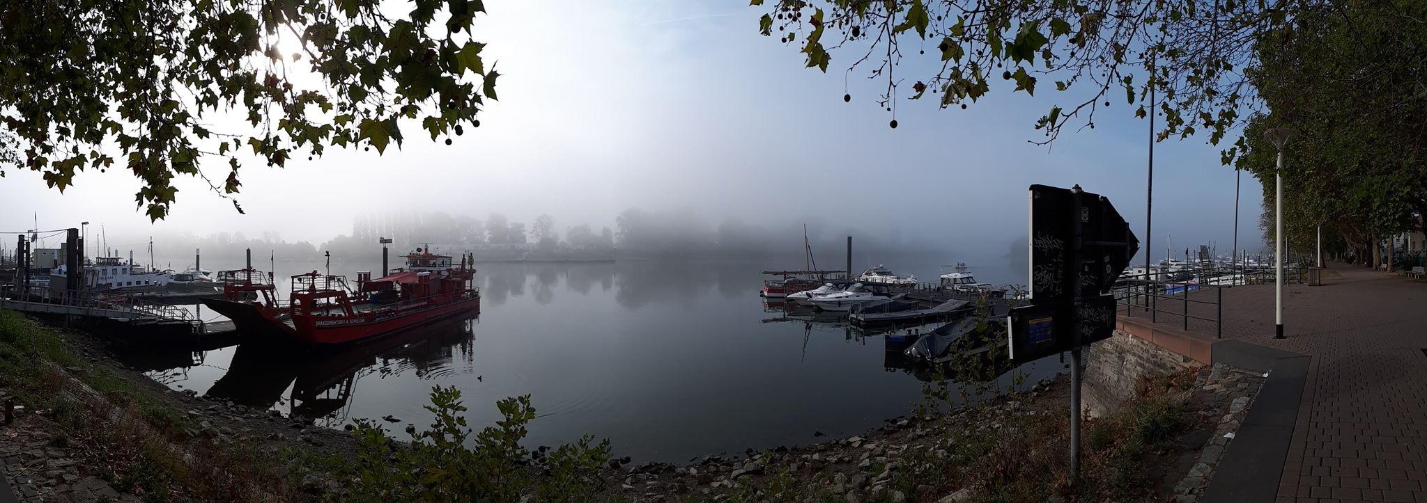 Nebel Rhein Wiesbaden