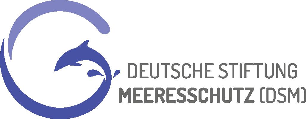 DSM_Logo-querformat_RGB-2