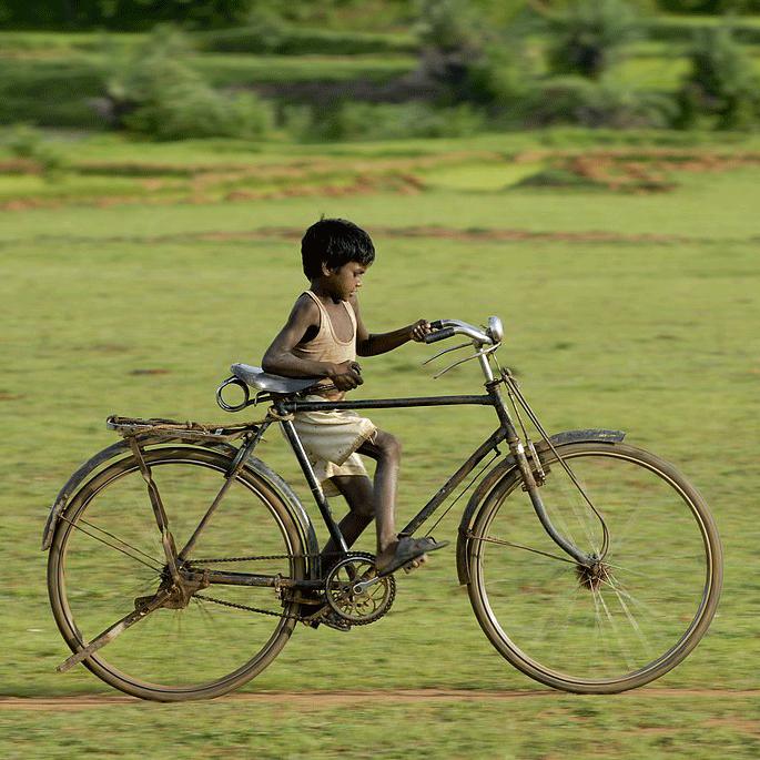 IND2008JBO341