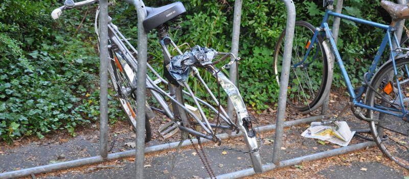 bike-425146_1920-min