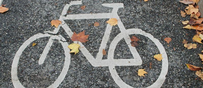 Fahrradsymbol auf der Straße mit Herbstlaub